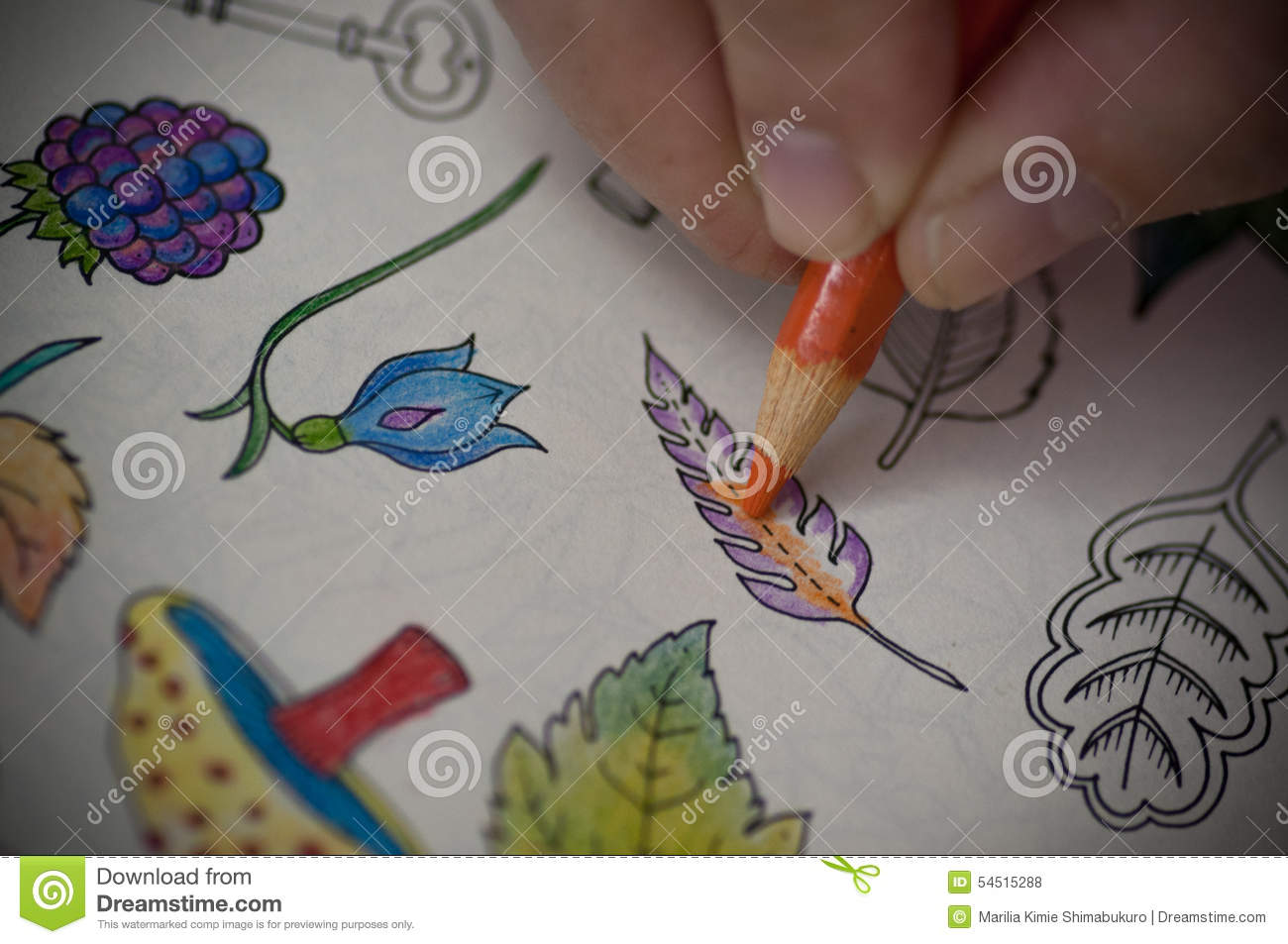 Coloring Book Stock Photo - Image: 54515288