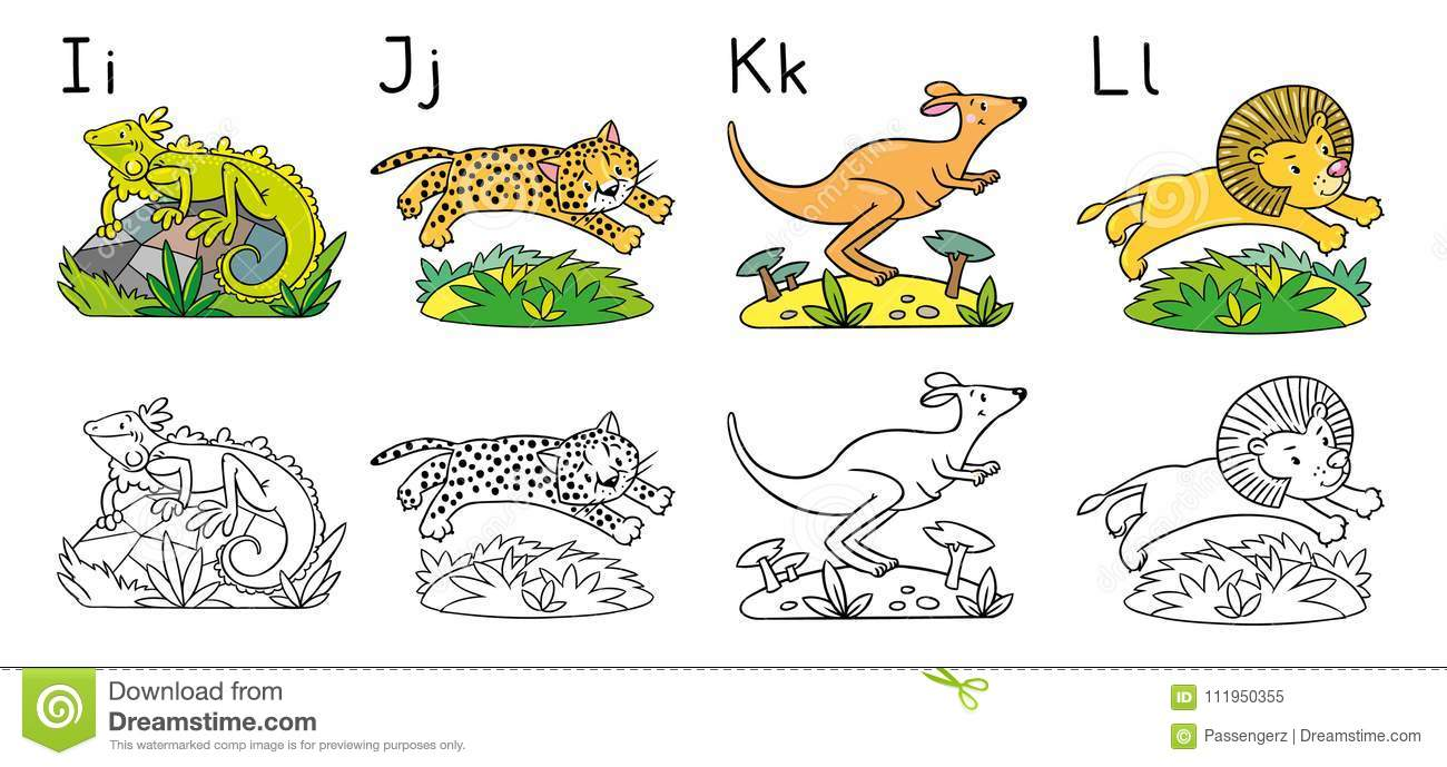 Animals Alphabet Or ABC Coloring Book Stock Vector