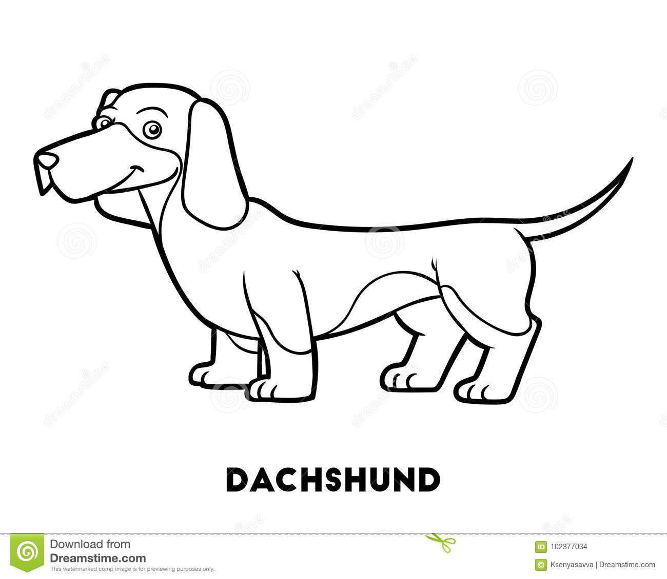 Download Coloring Book Dog Breeds Dachshund Stock Vector