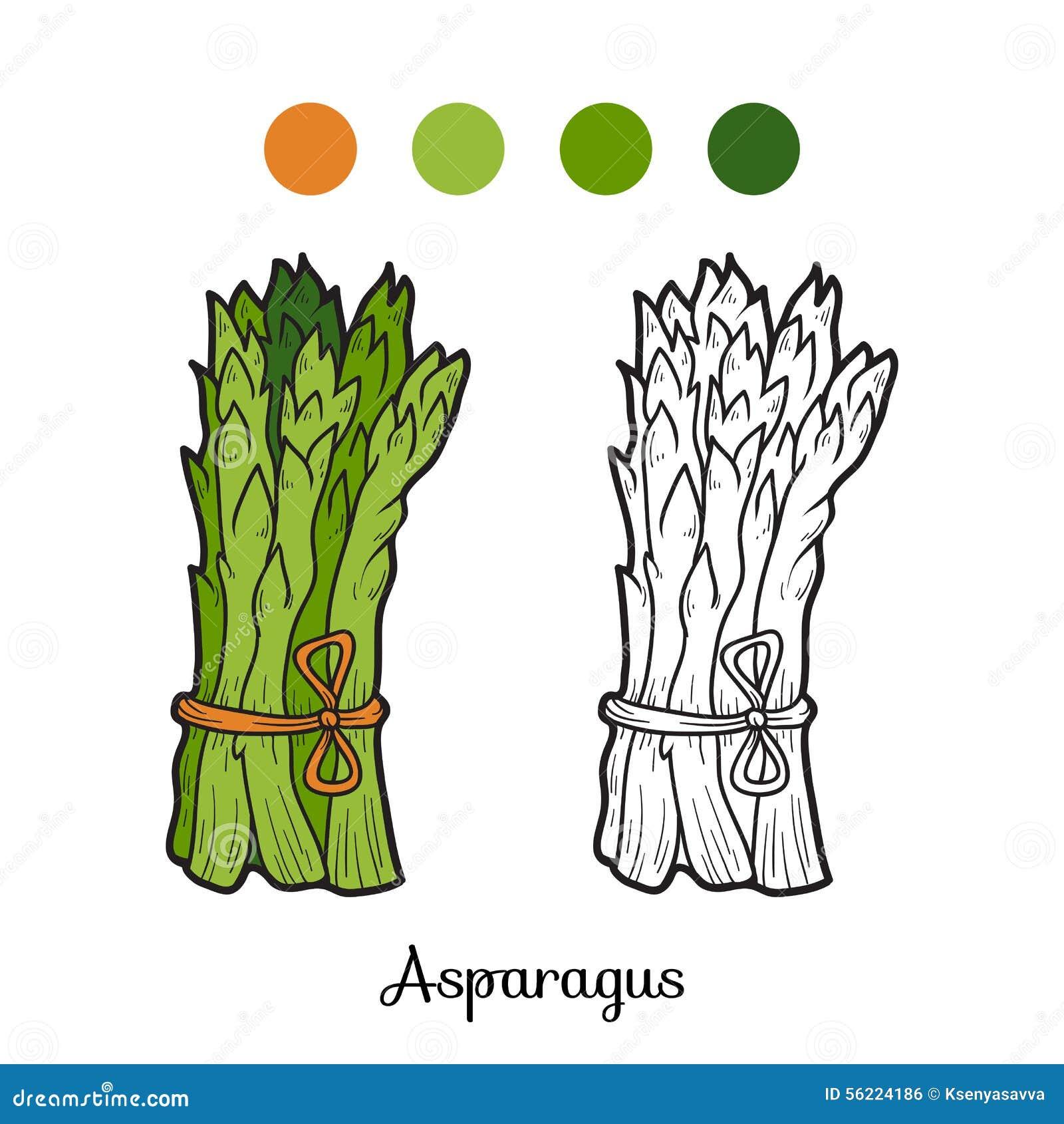 Asparagus Stock Illustrations – 3,661 Asparagus Stock Illustrations ...