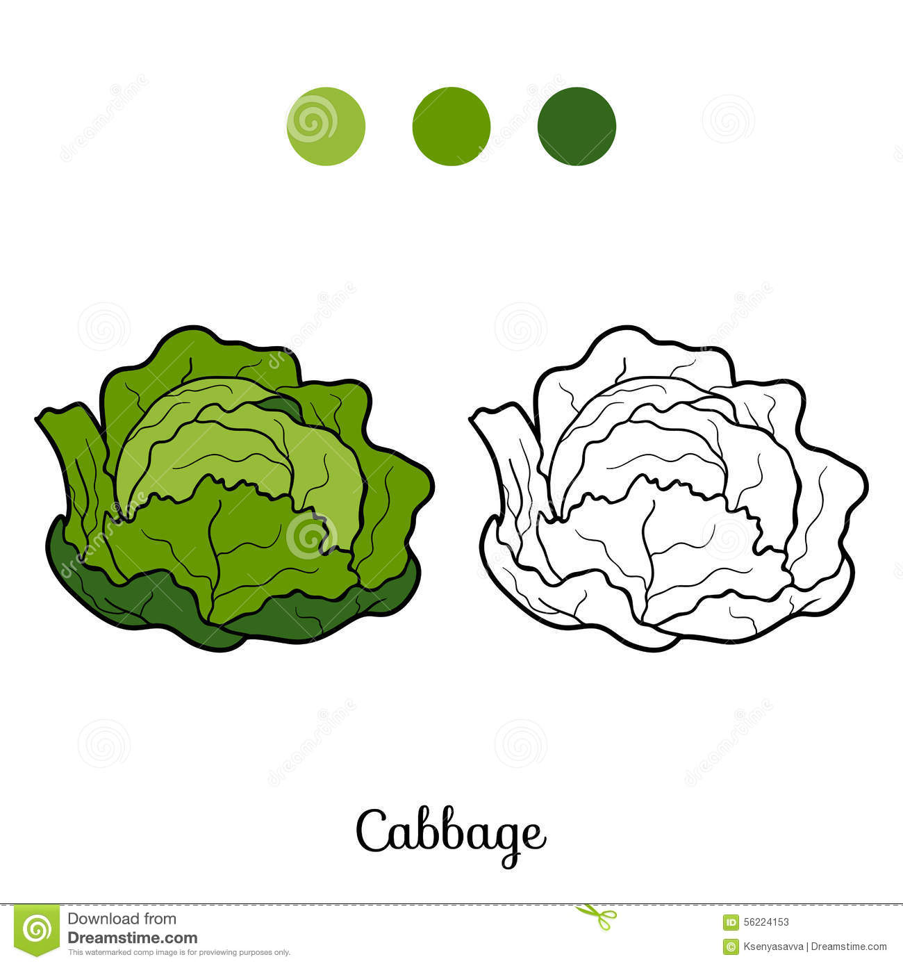 Coloring Book Fruits And Vegetables Cabbage Stock Photos