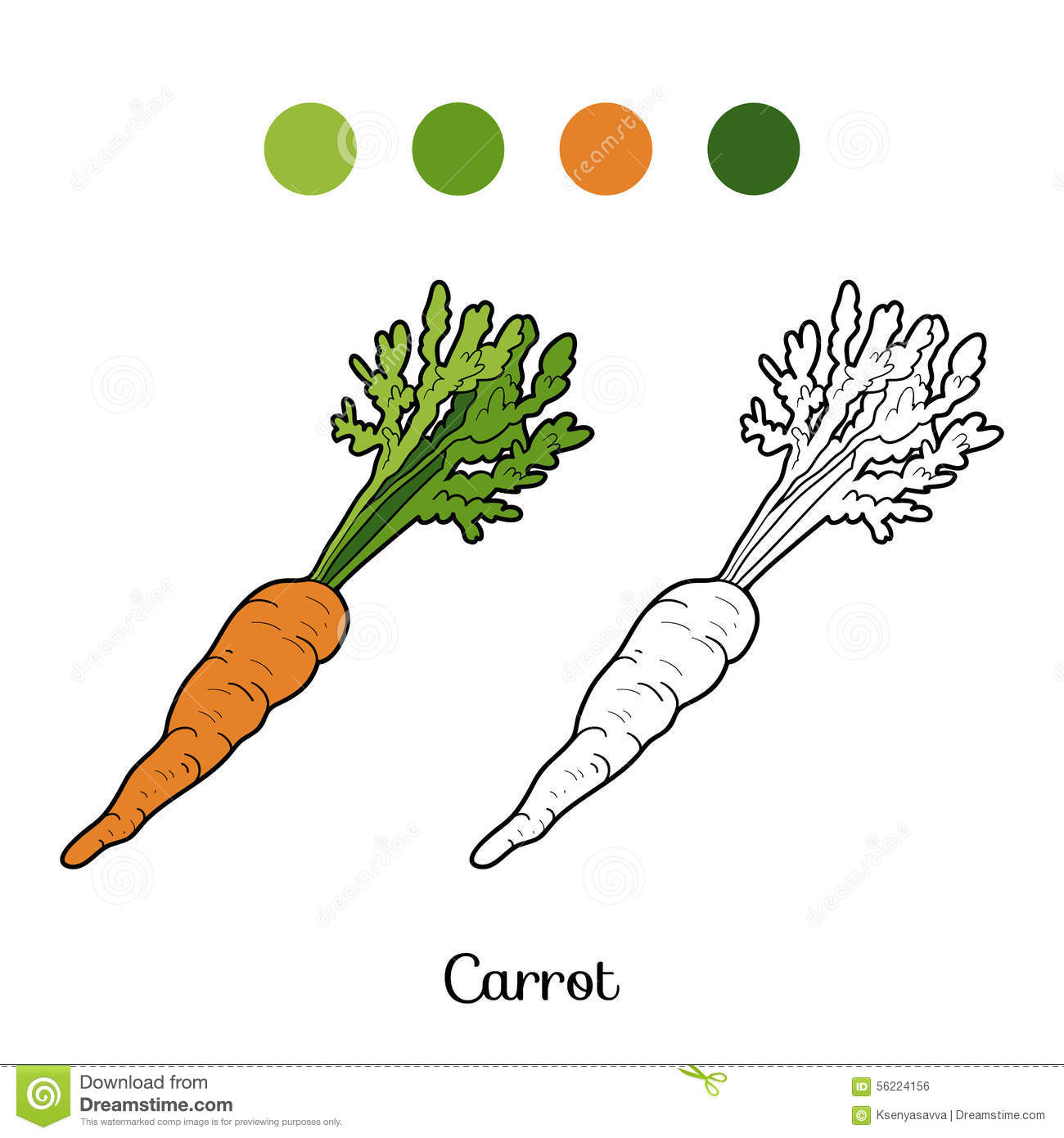 Coloring Book Fruits And Vegetables Carrot Stock Vector