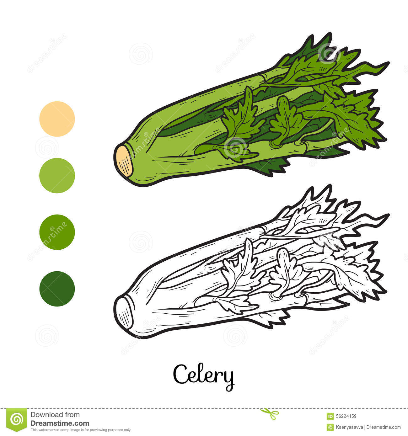 Adult Top Celery Coloring Page Images cute coloring book fruits and vegetables celery stock vector image gallery images