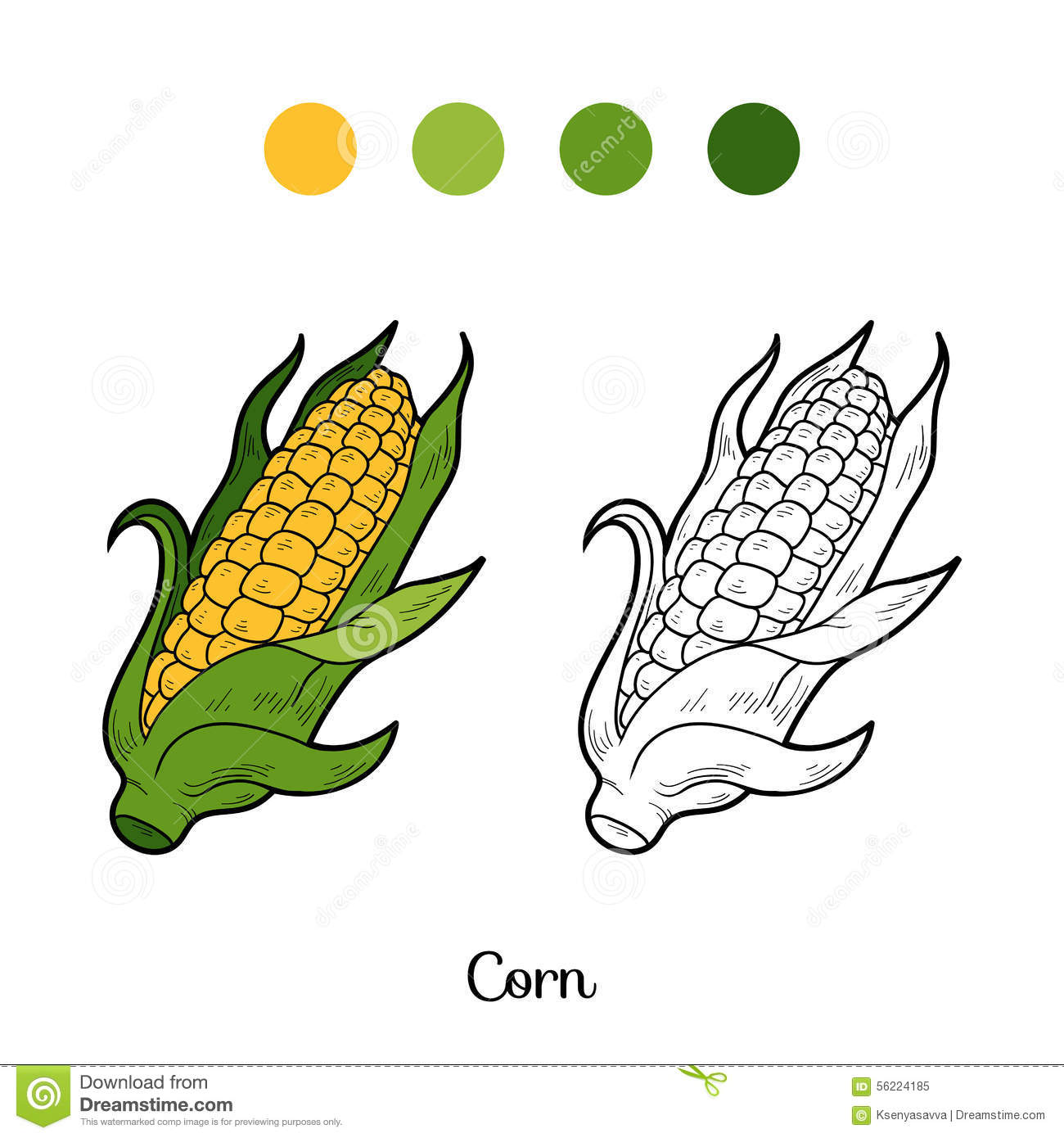 Coloring book pictures of vegetables - Coloring Book Fruits And Vegetables Corn Royalty Free Stock Photo