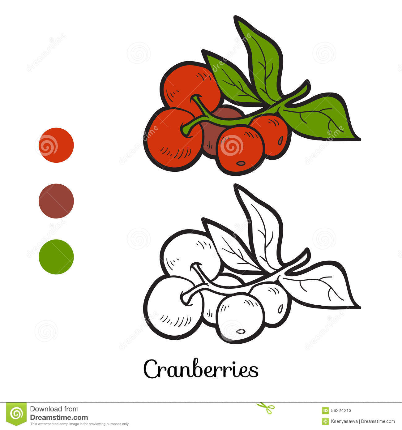 cranberry coloring pages kids - photo#10