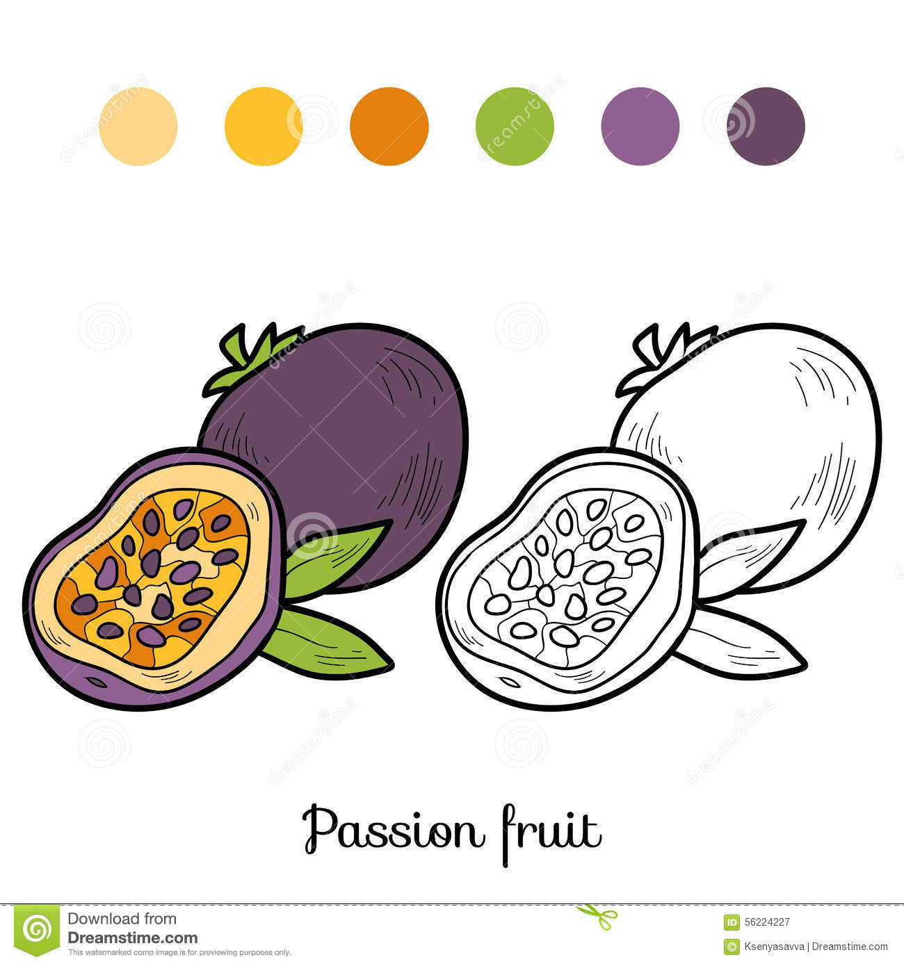 coloring book fruits and vegetables passion fruit stock vector