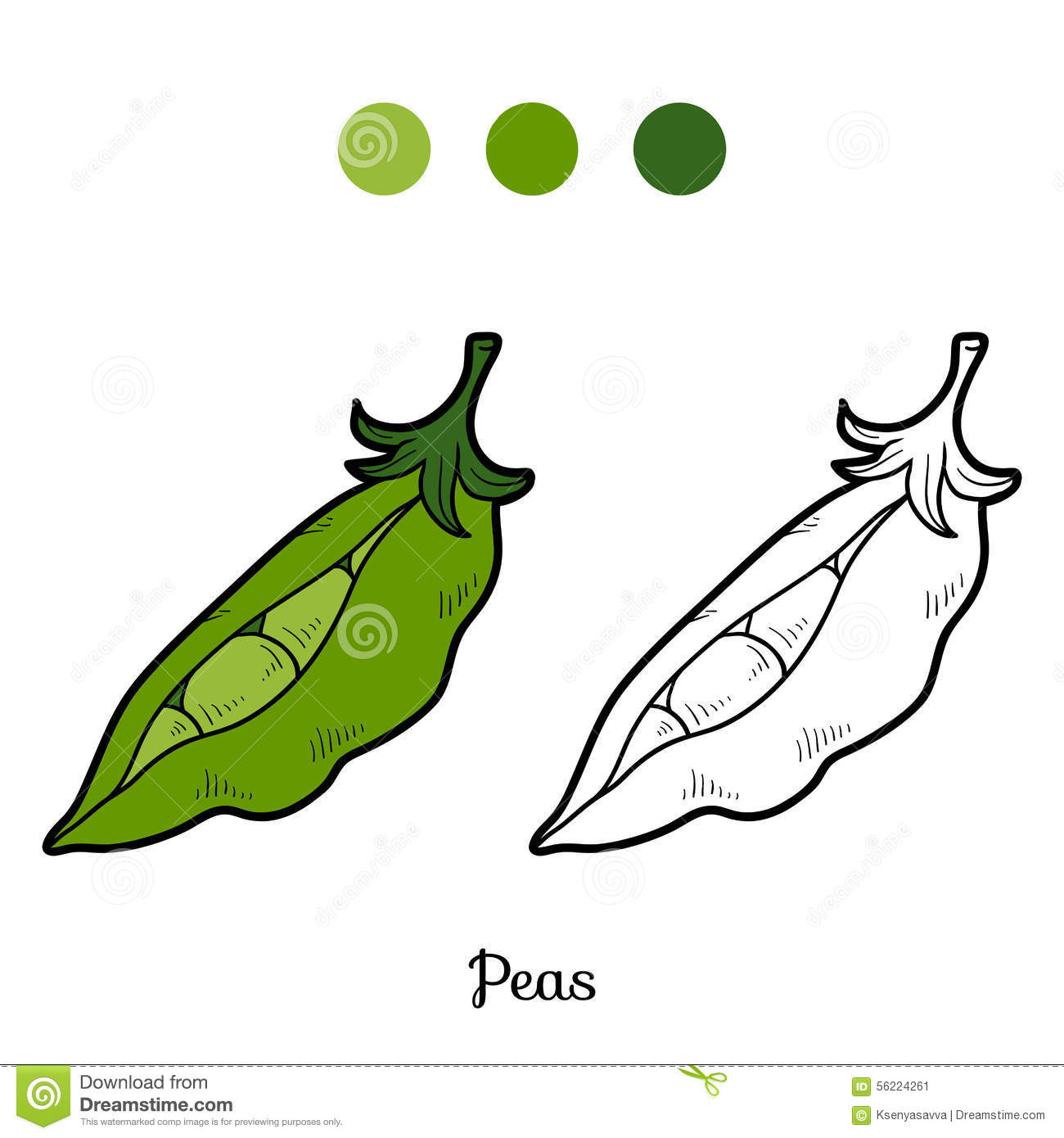 Coloring book pictures of vegetables - Coloring Book Fruits And Vegetables Peas Stock Image