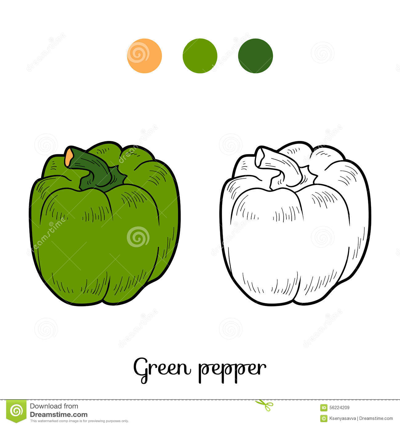 Coloring Book: Fruits And Vegetables (pepper) Stock Vector ...