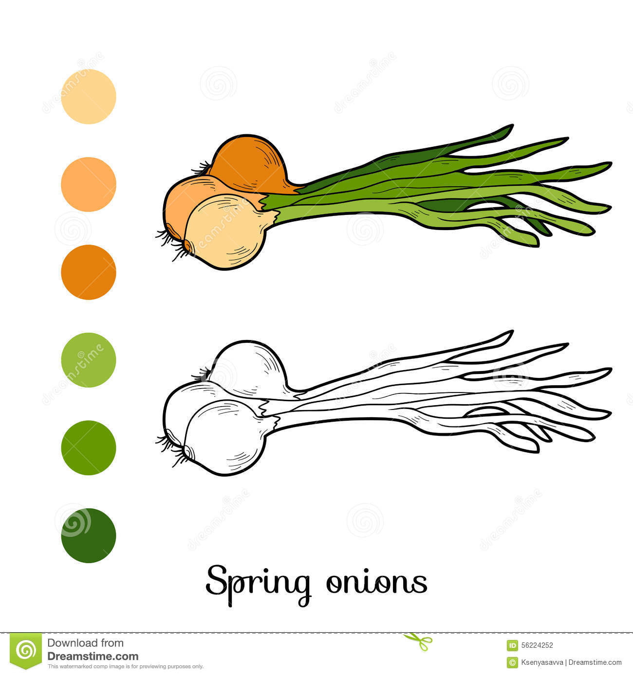 Coloring book pictures of vegetables - Coloring Book Fruits And Vegetables Spring Onions Stock Photography