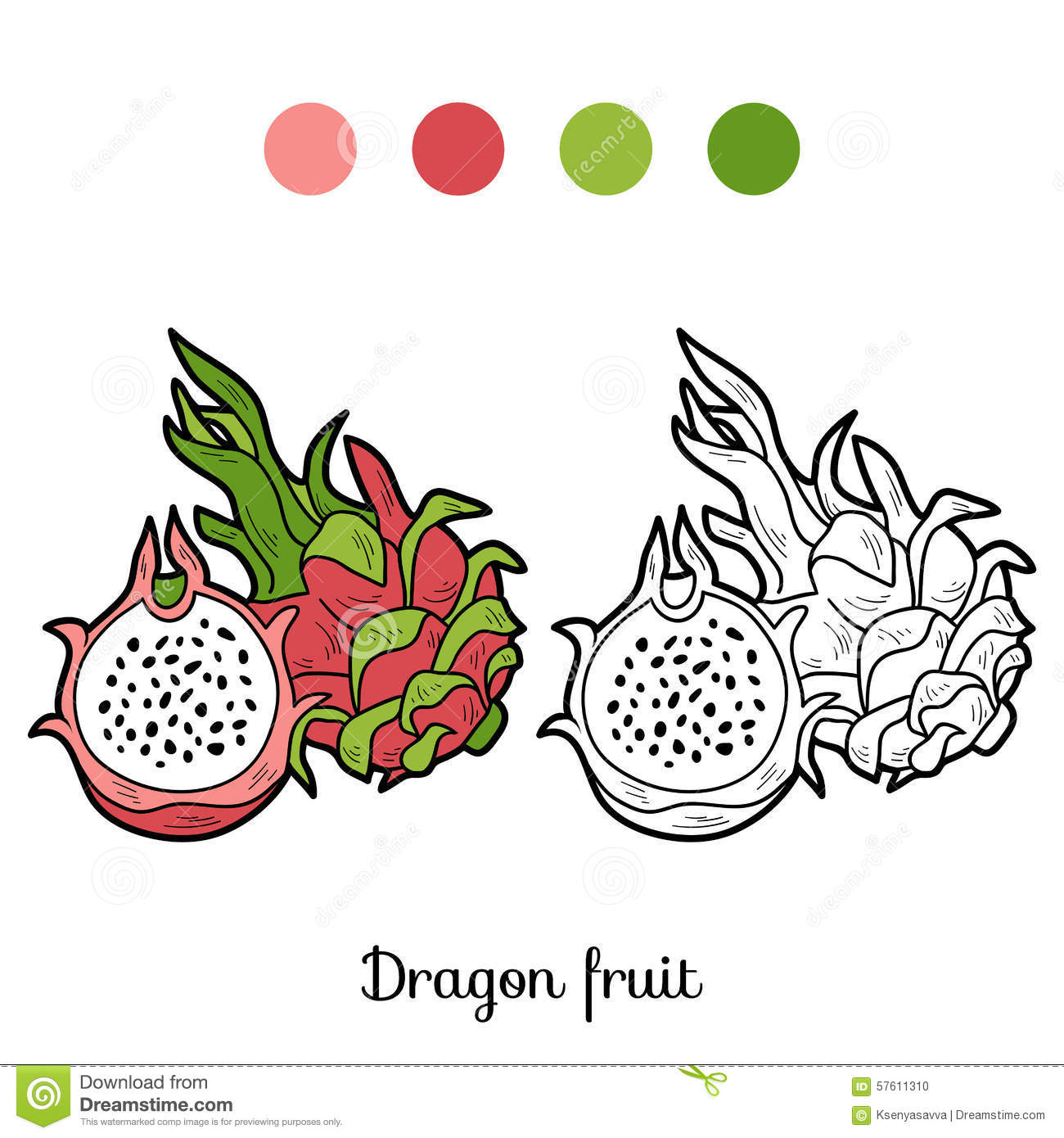 coloring book game fruits and vegetables dragon fruit stock