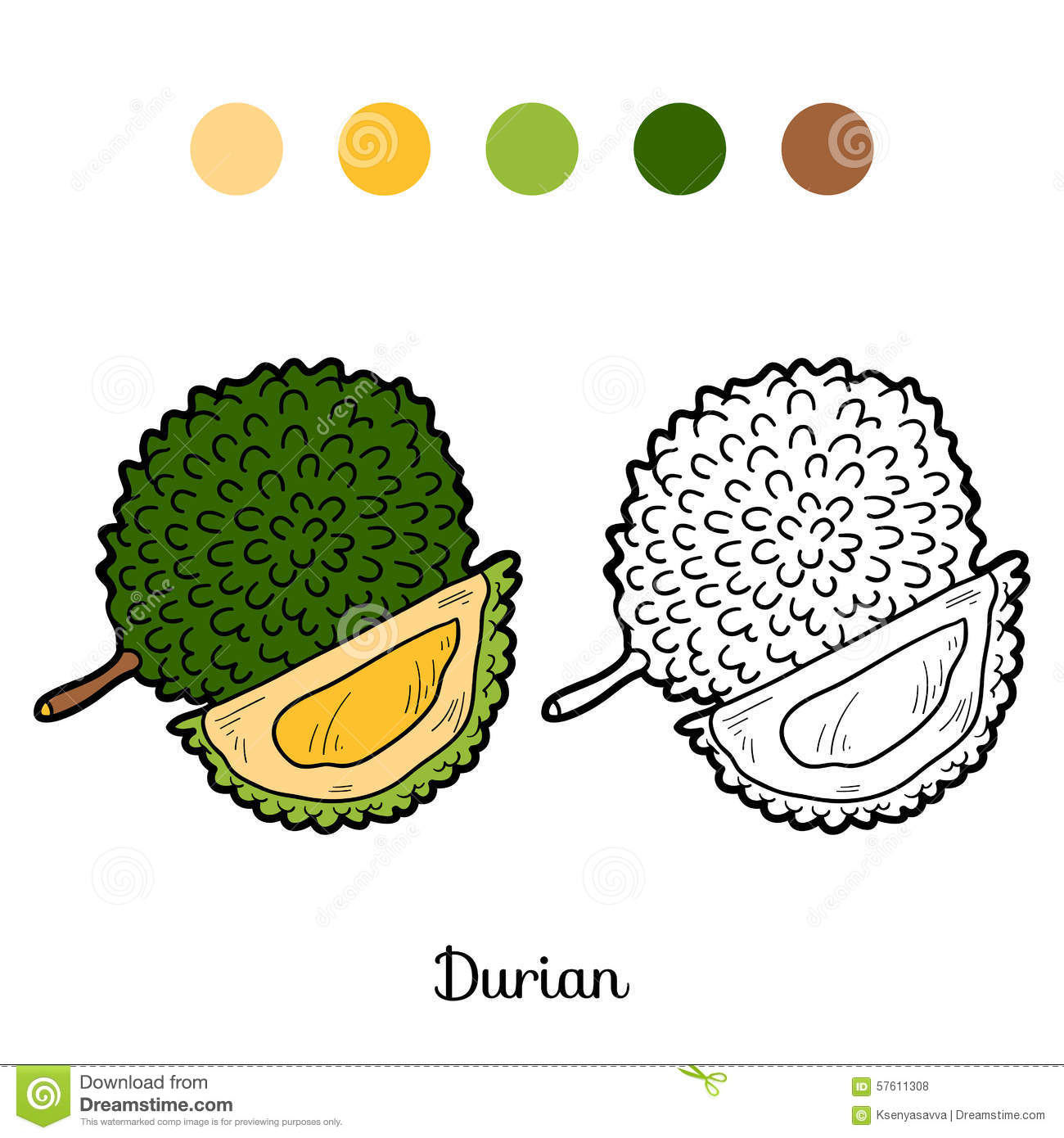 durian fruit outline 2015-3-23 essay outline/plan service  platelet count of children with dengue fever biology essay print  the durian is the fruit of.