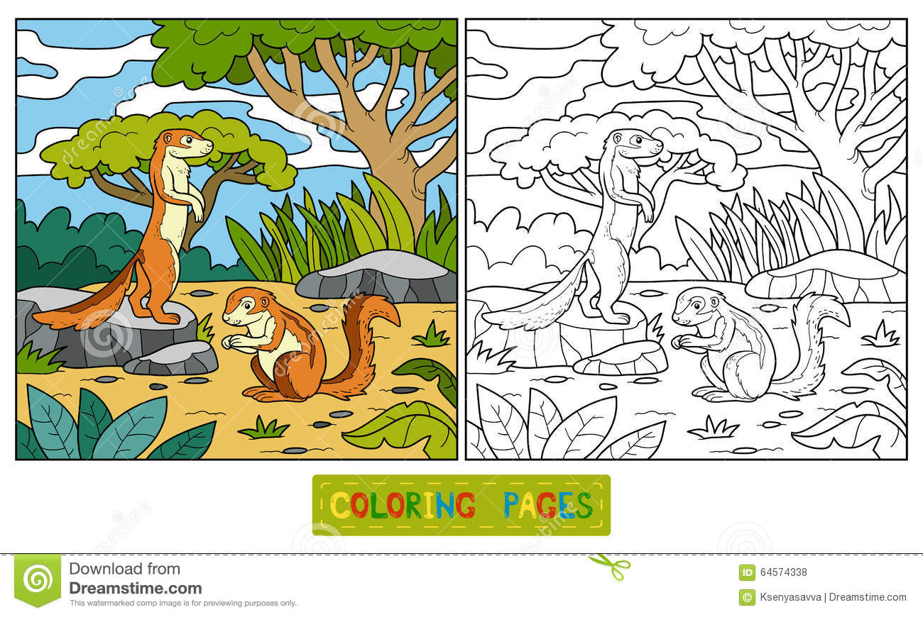xerus squirrel coloring pages - photo #14