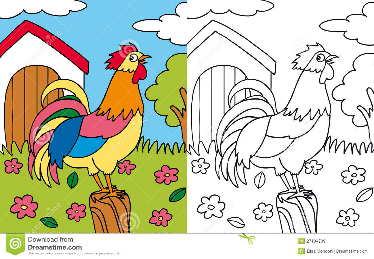 Kea Coloring Book Pictures Download Hen Rooster Royalty Free Stock Images