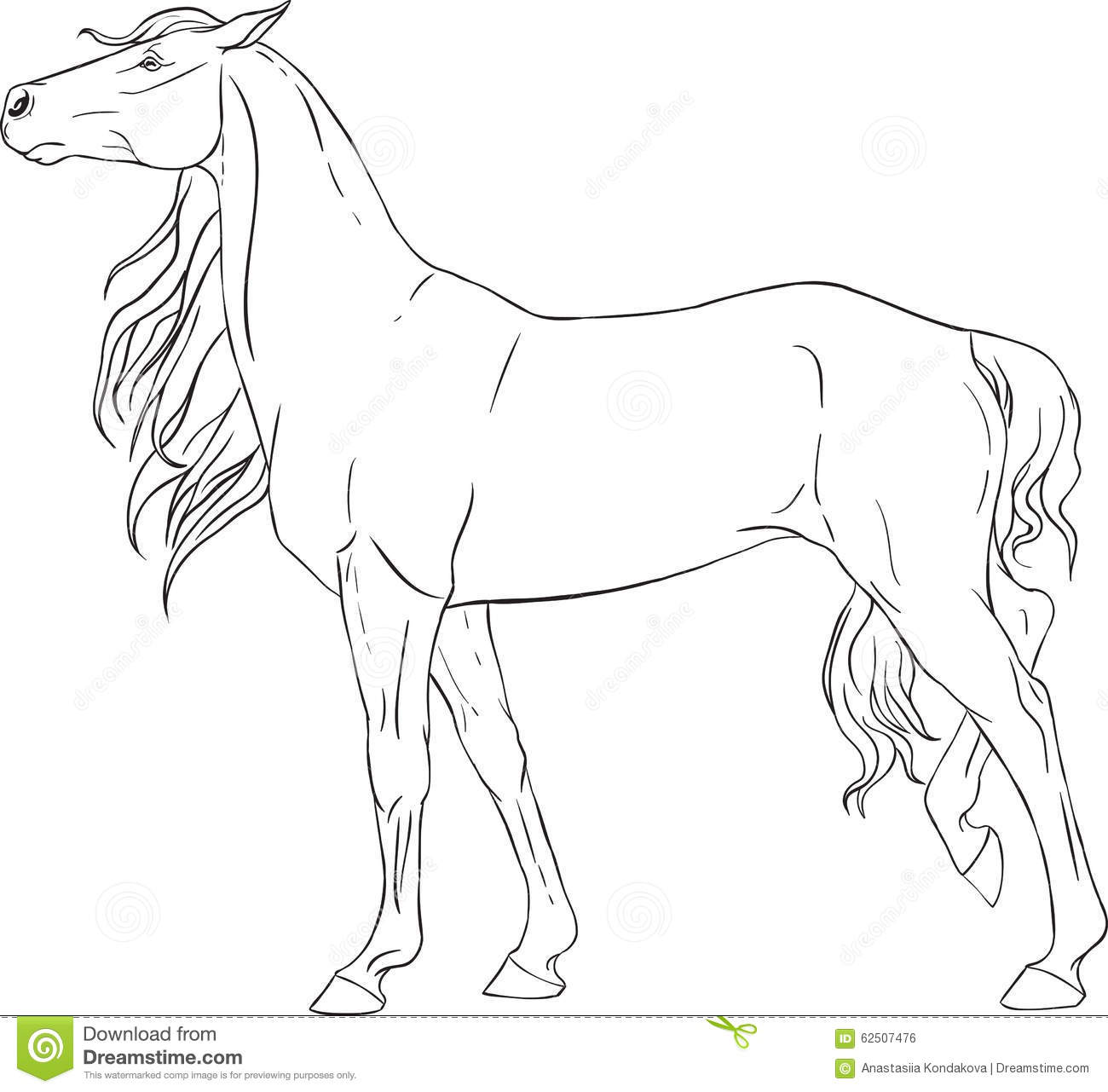 Coloring Book With A Horse Stock Vector Illustration Of