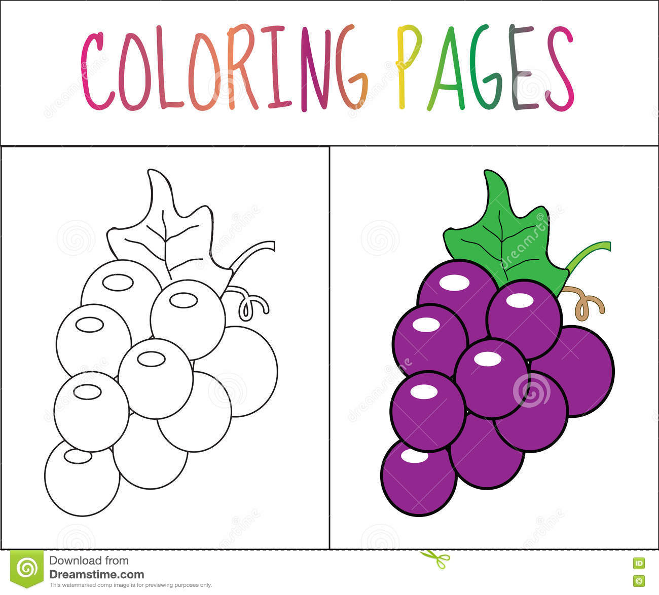 Coloring Book Page. Grapes. Sketch And Color Version. Coloring For ...