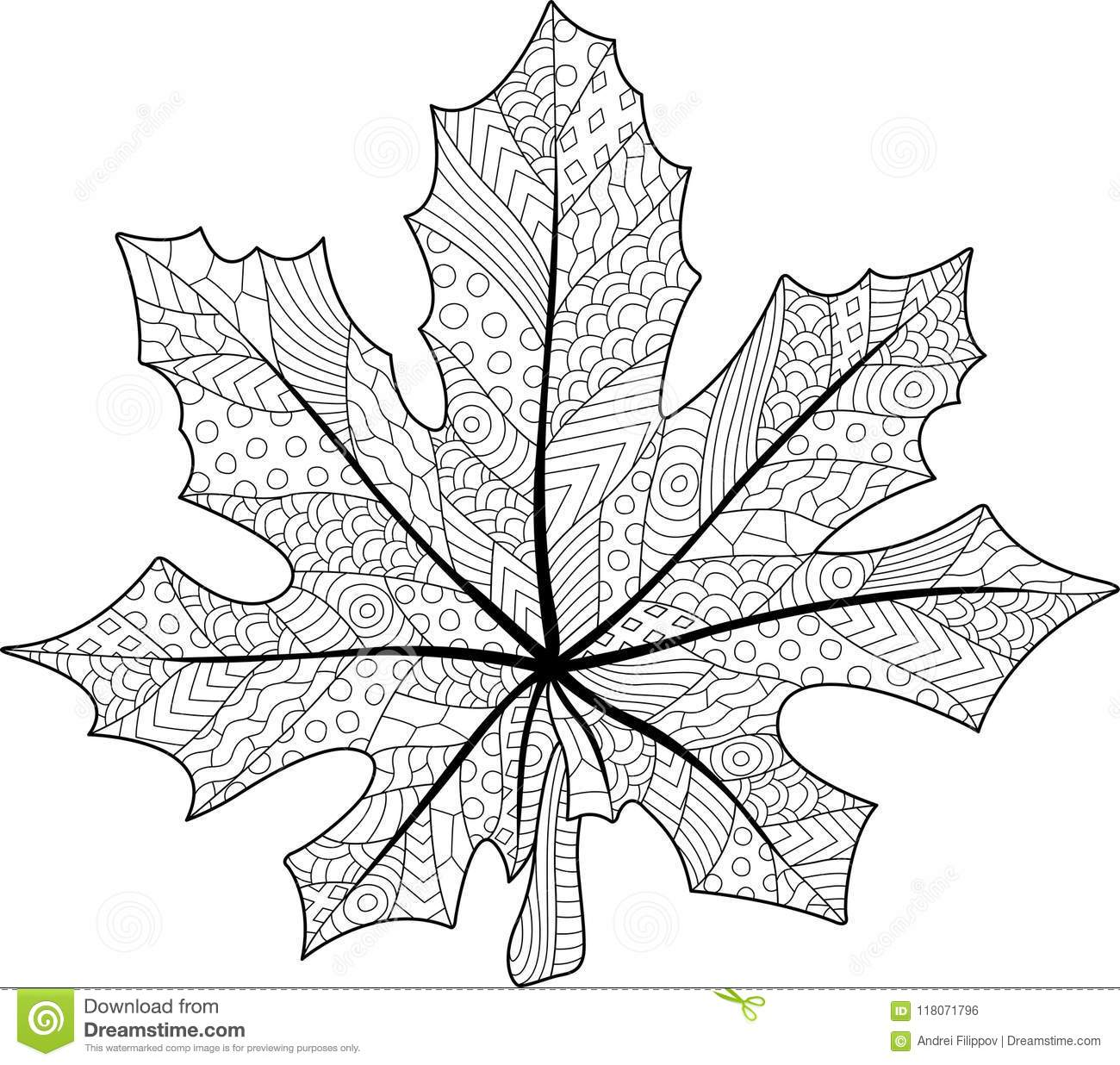Coloring Book Page With Maple Leaf Stock Vector - Illustration of ...