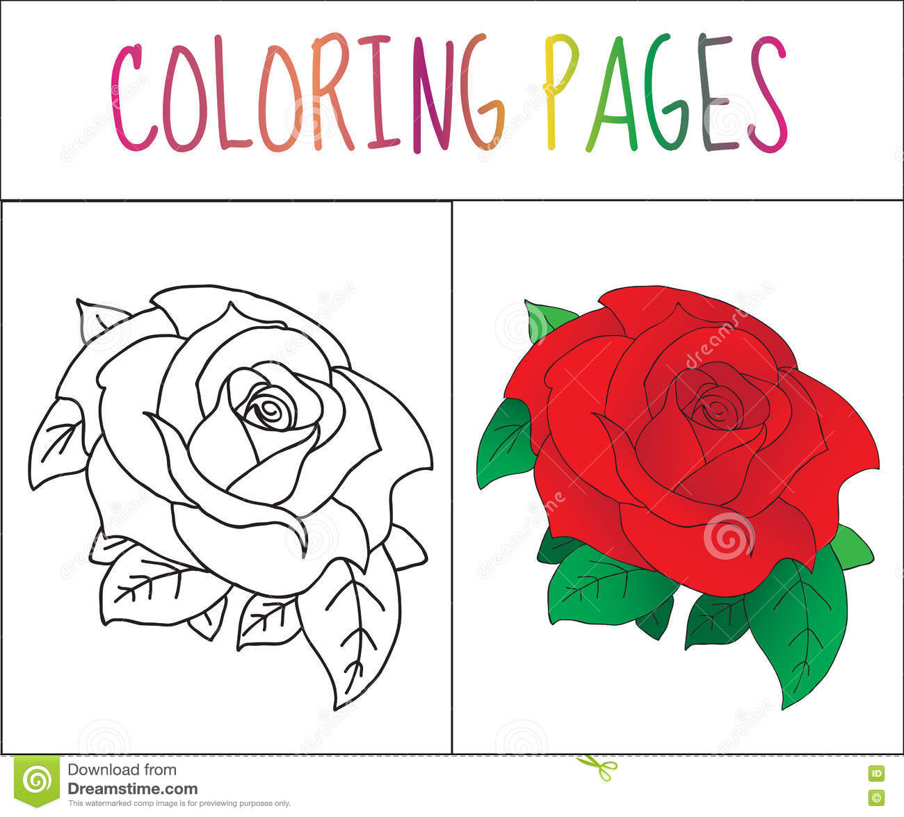 Coloring Book Page, Rose. Sketch And Color Version. Coloring For ...