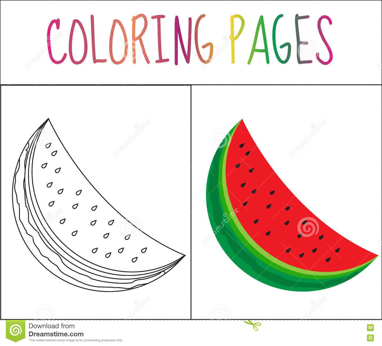 coloring book page watermelon sketch and color version coloring