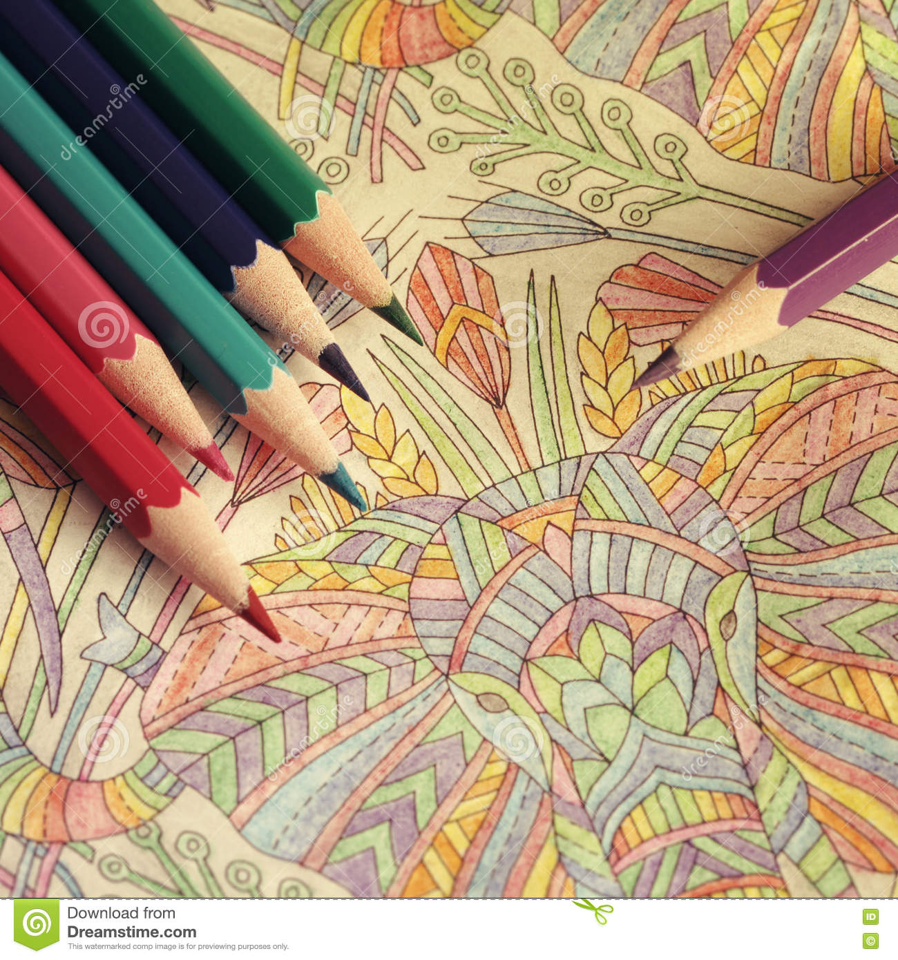 The Coloring Book With Pencils Stock Image - Image of line, flower ...