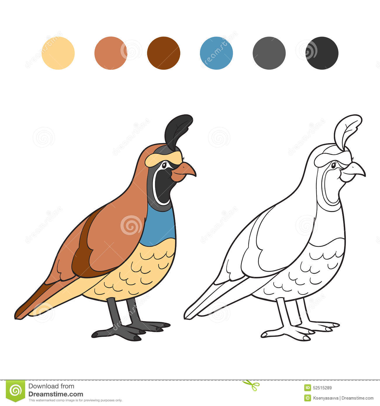 Coloring book (quail) stock vector. Illustration of outline - 52515289