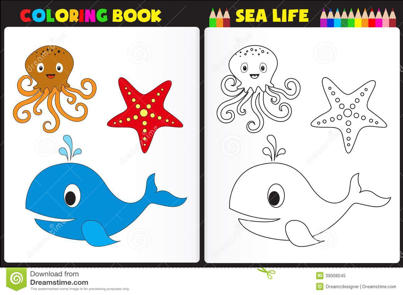 Coloring Book Sea Life Stock Vector Illustration Of