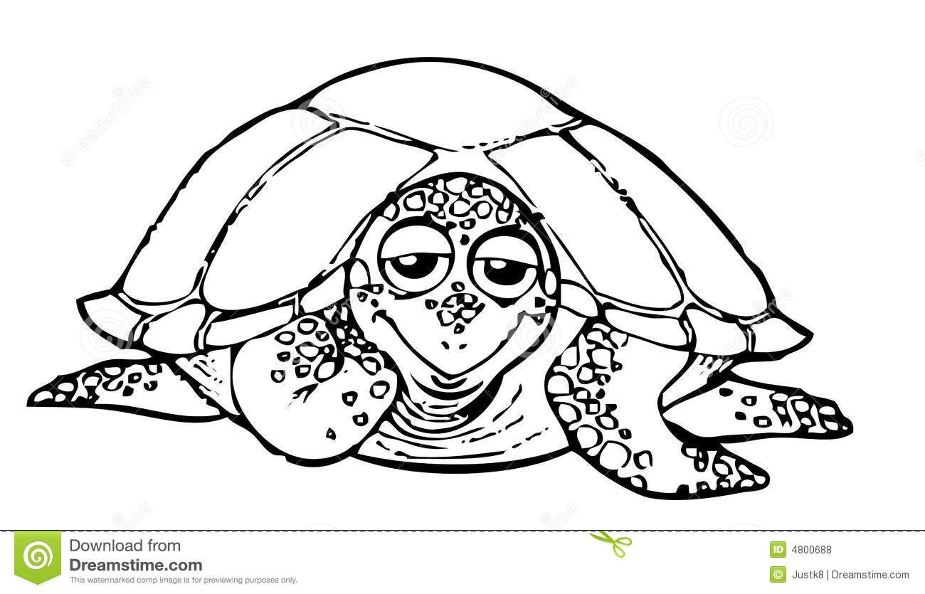 coloring book turtle royalty free stock photos image 4800688