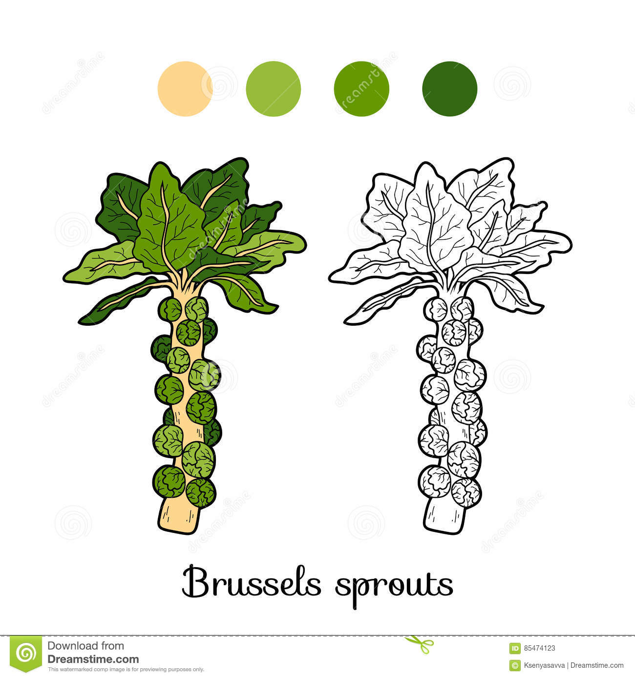 Sprouts Natural Food Coloring