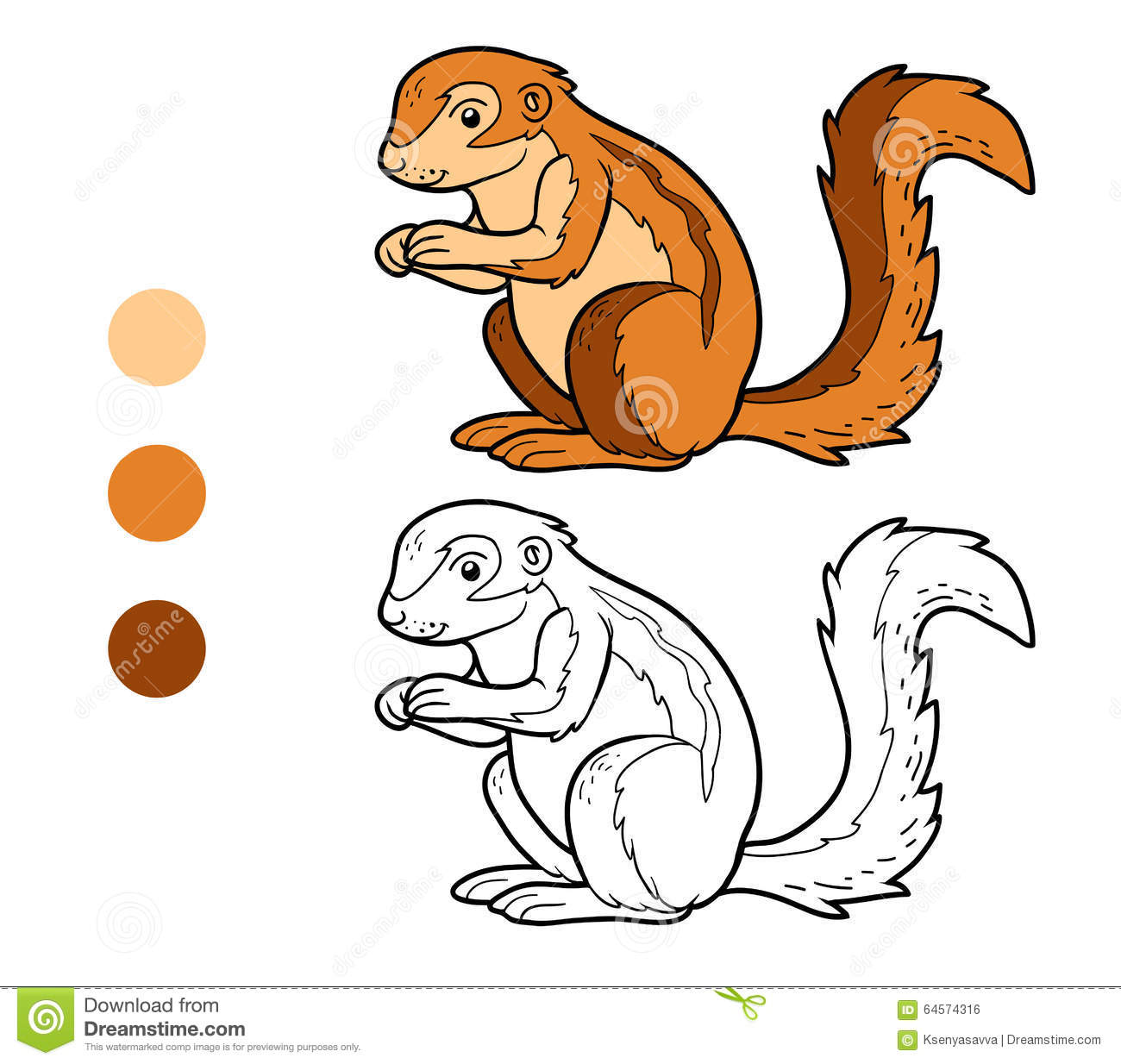 xerus squirrel coloring pages - photo #5