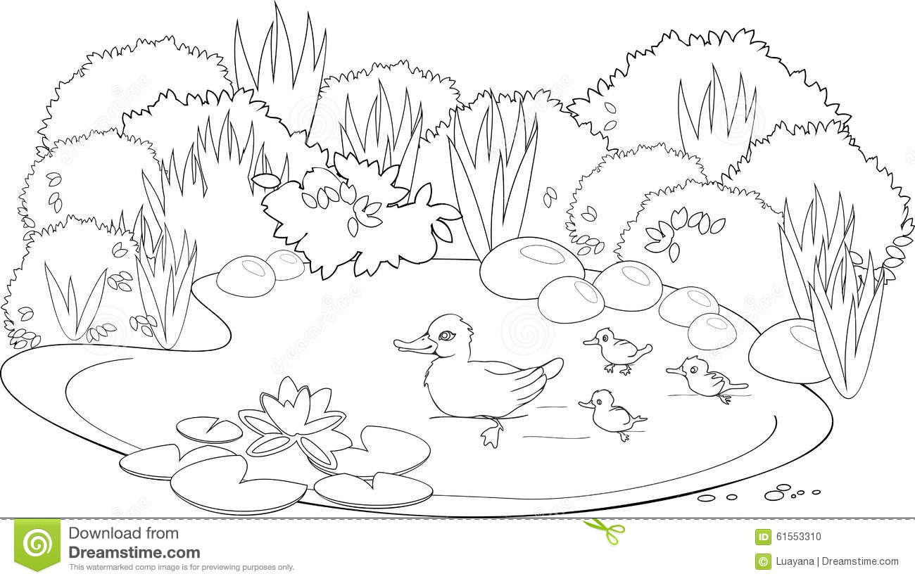 pond ecosystem coloring pages | Coloring duck pond stock vector. Illustration of artwork ...