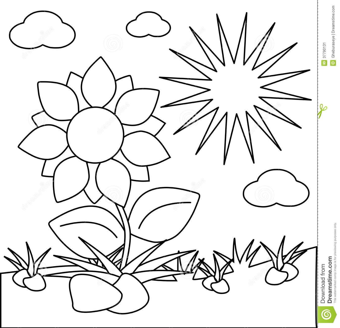 Coloring Flowers Isolated With Sun Stock Image
