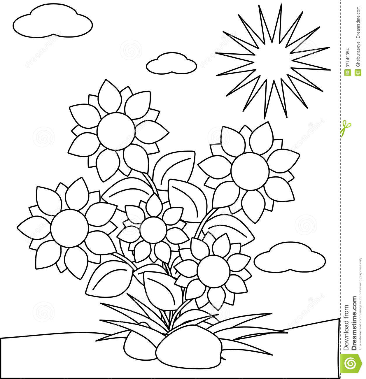 Coloring Flowers Isolated With