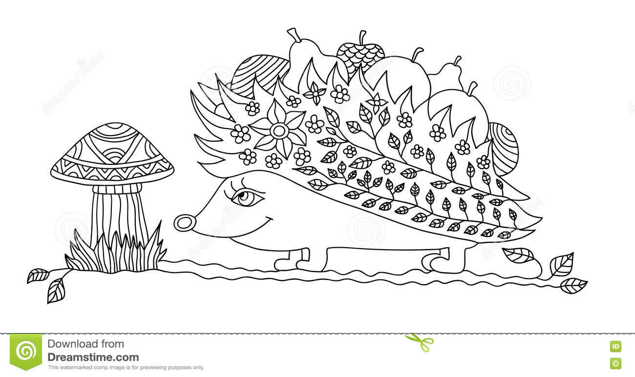 coloring page for adults funny hedgehog stock vector image