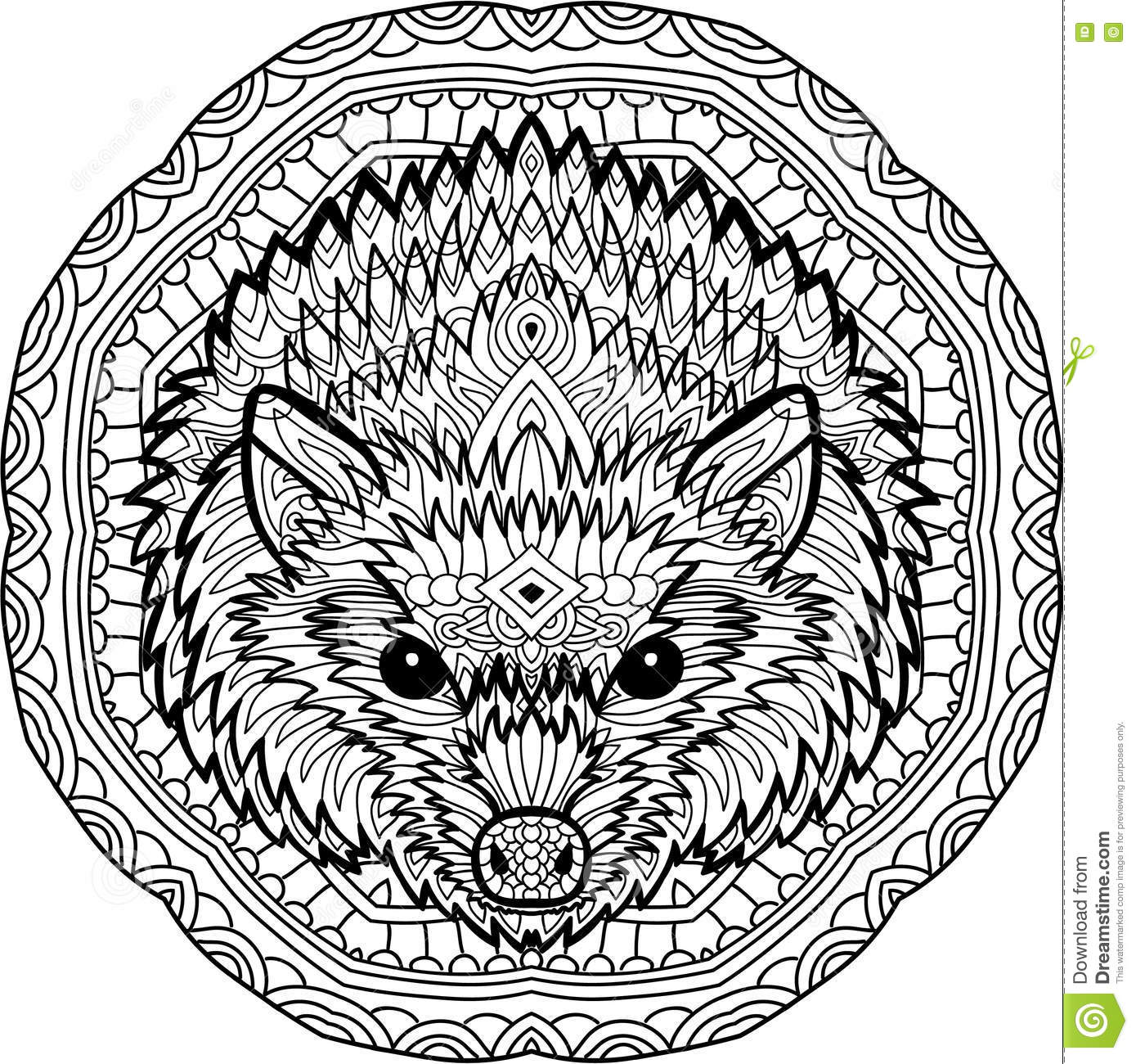 Coloring page for adults stern hedgehog on a background of a circular