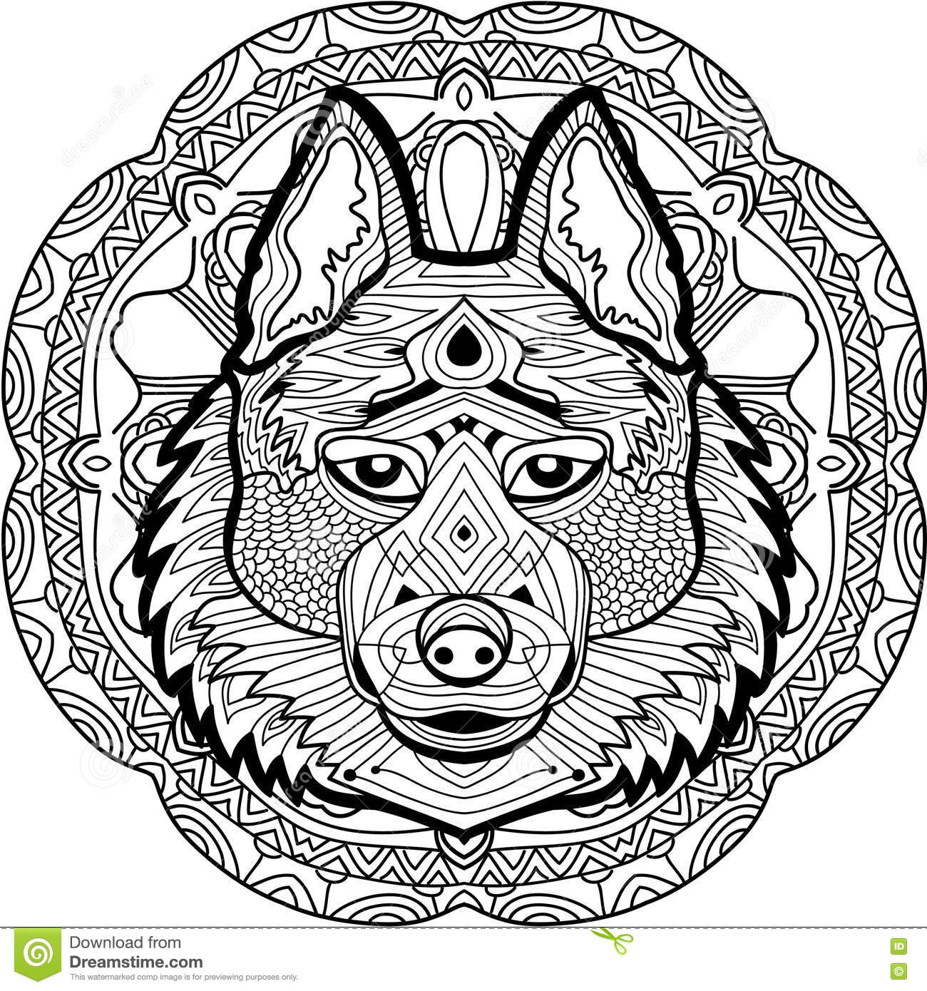 wolf coloring book for adults vector stock vector image 70556982