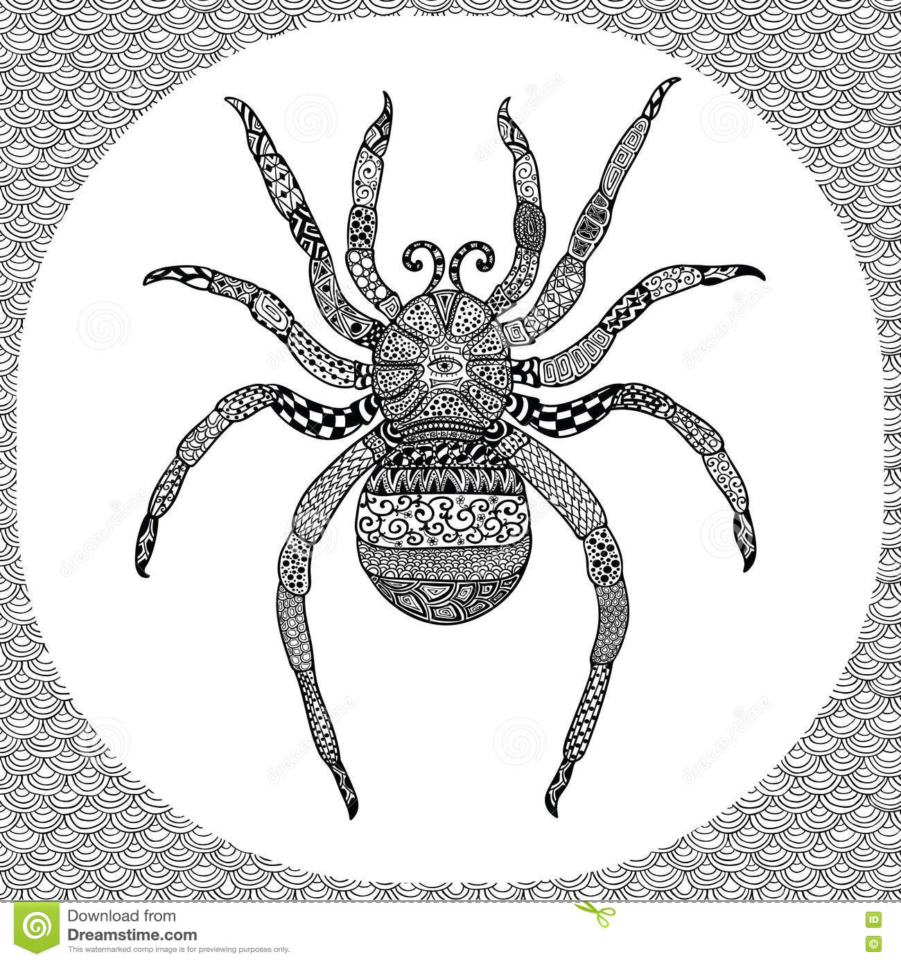 coloring page of balck spider zentangle illustartion stock vector