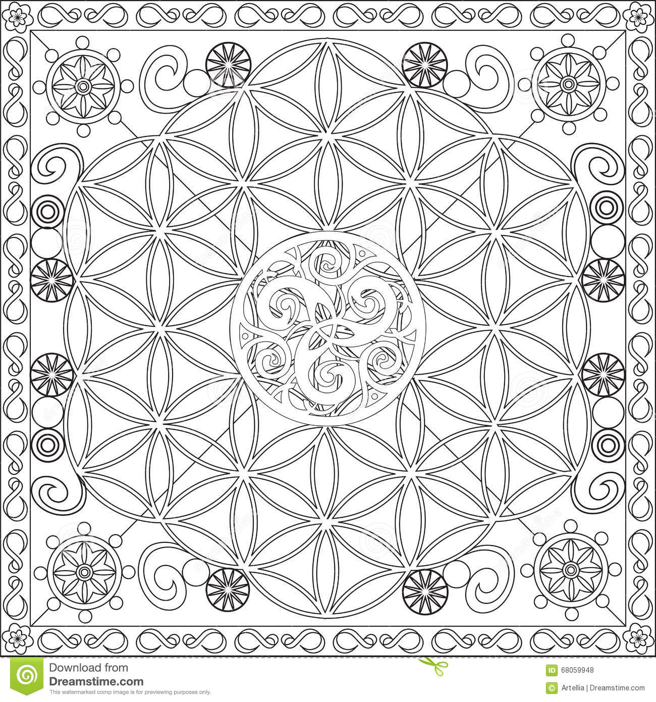 coloring page book adults square format flower life mandala design vector illustration blank spaces