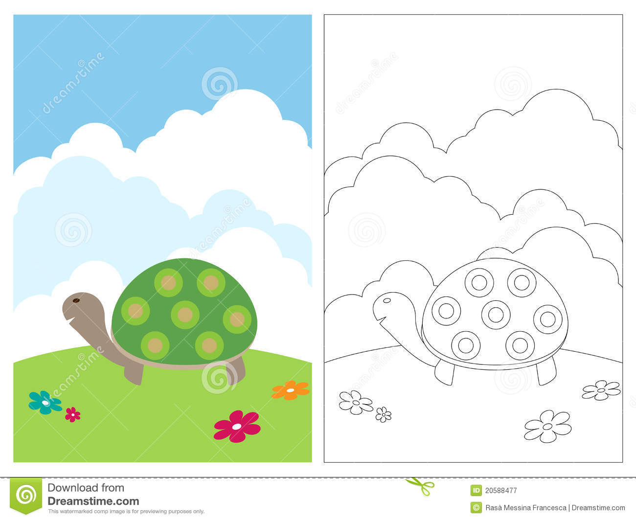 coloring page book turtle royalty free stock photography image