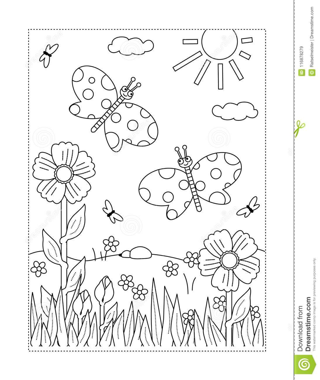 Coloring Page With Butterflies, Flowers, Sun, Grass Stock