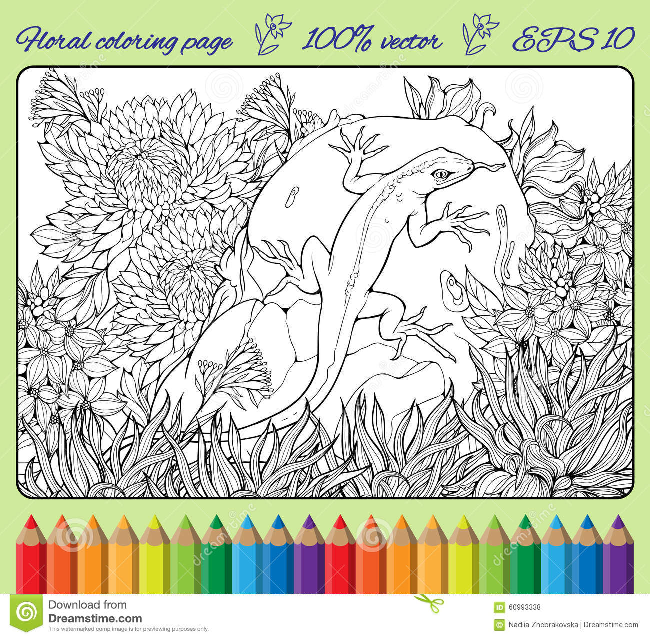 Download Coloring Page With Flowers Grass Rock And Lizard Stock Vector