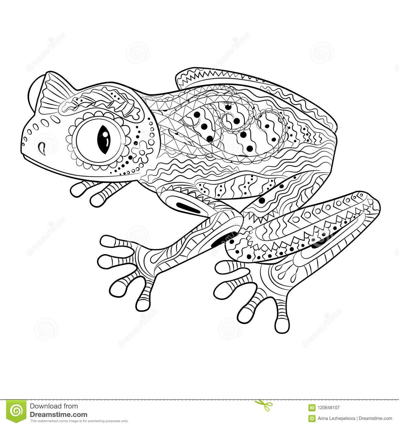 Coloring Page With Frog In Patterned Style. Stock Vector ...