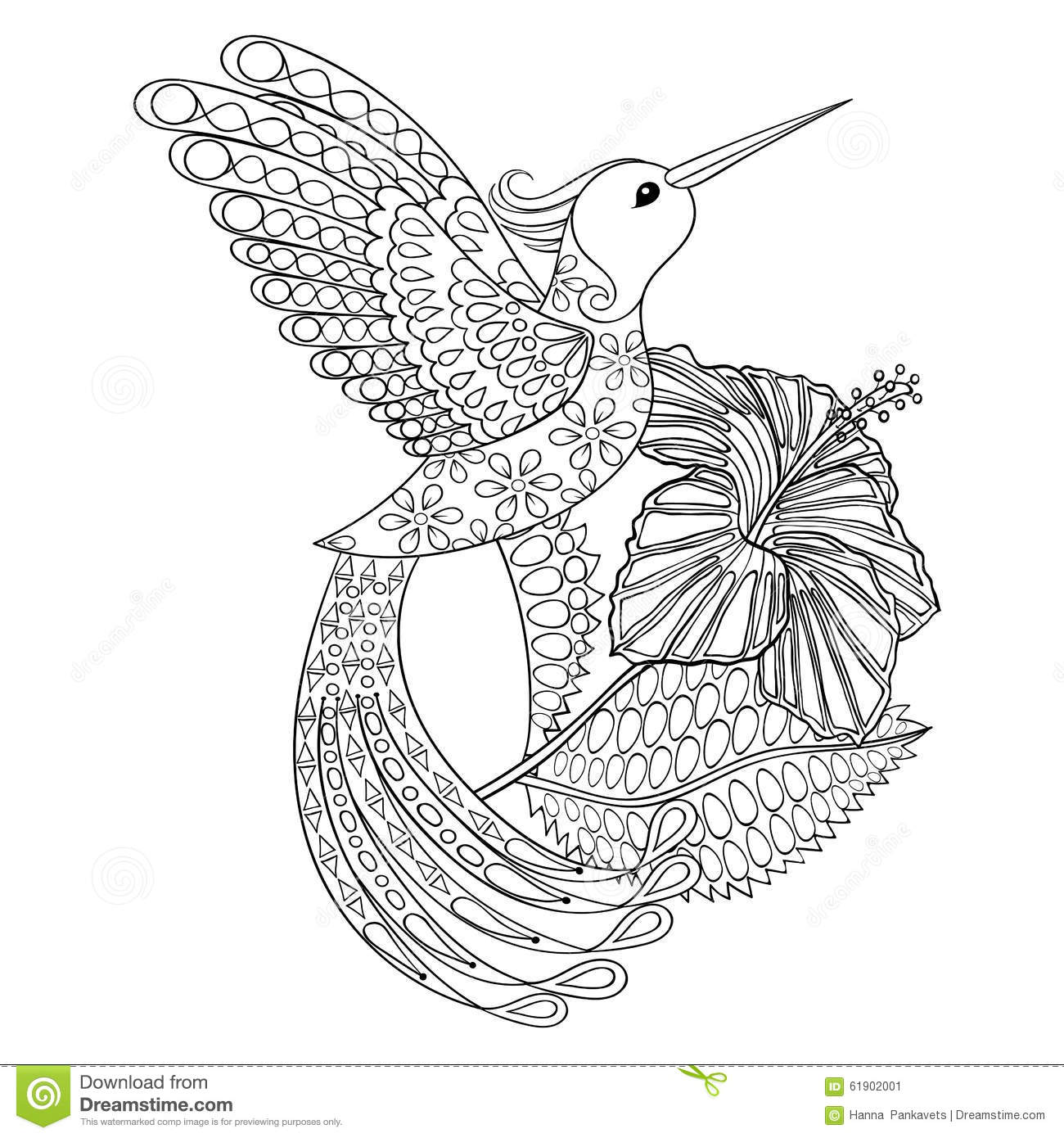 coloring page with hummingbird in hibiskus zentangle stock vector
