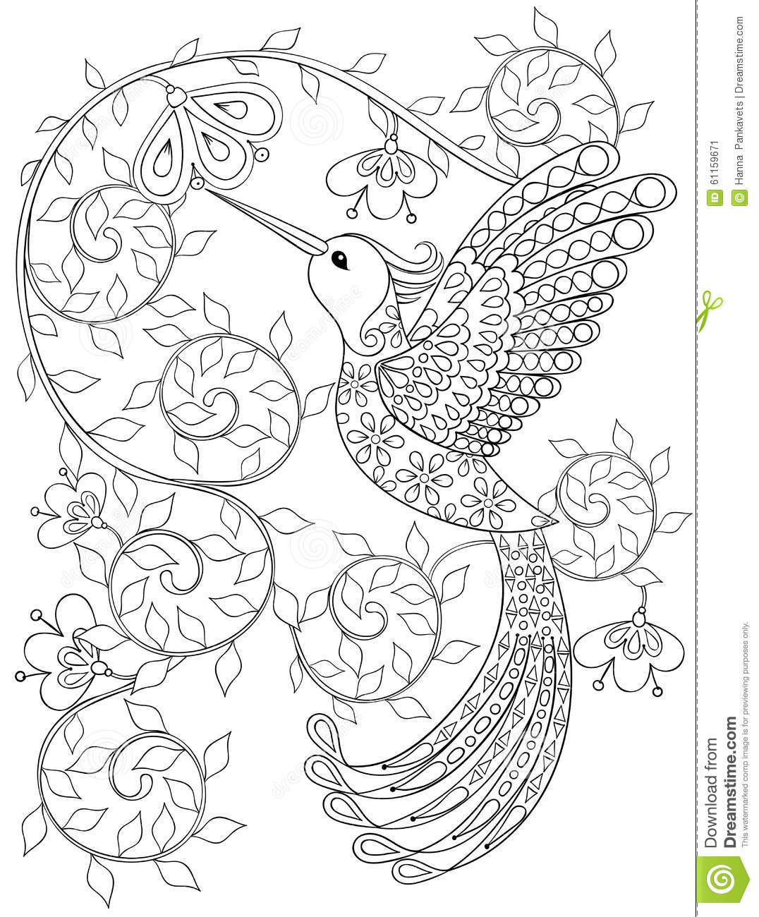 Coloring Page With Hummingbird Zentangle Flying Bird For