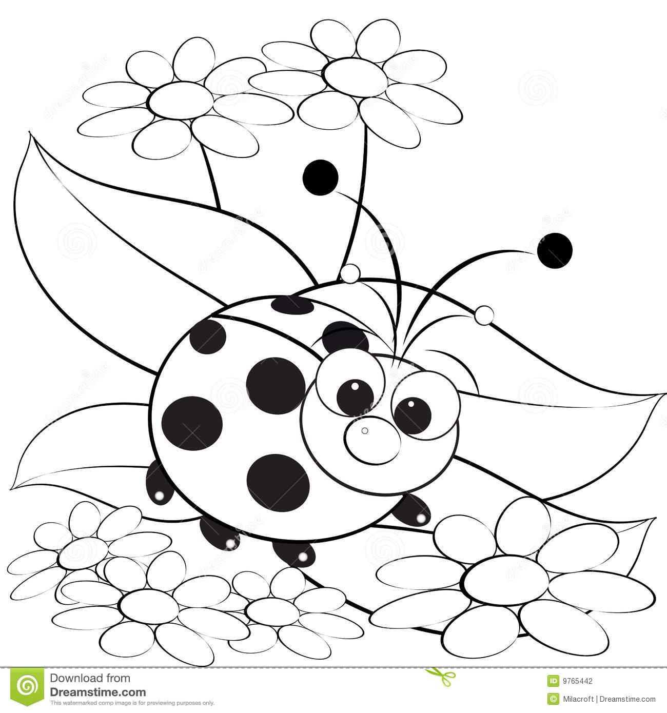 Coloring Page Ladybug And Daisy Stock Vector Illustration Of