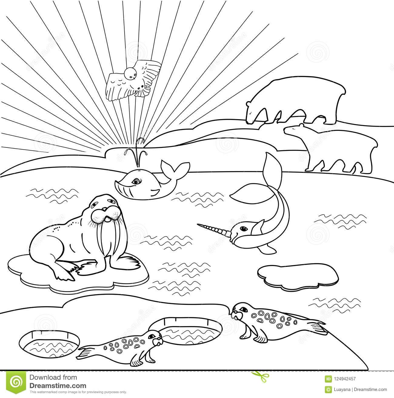 Coloring Page. Northern Landscape With Different Polar Animals Stock ...