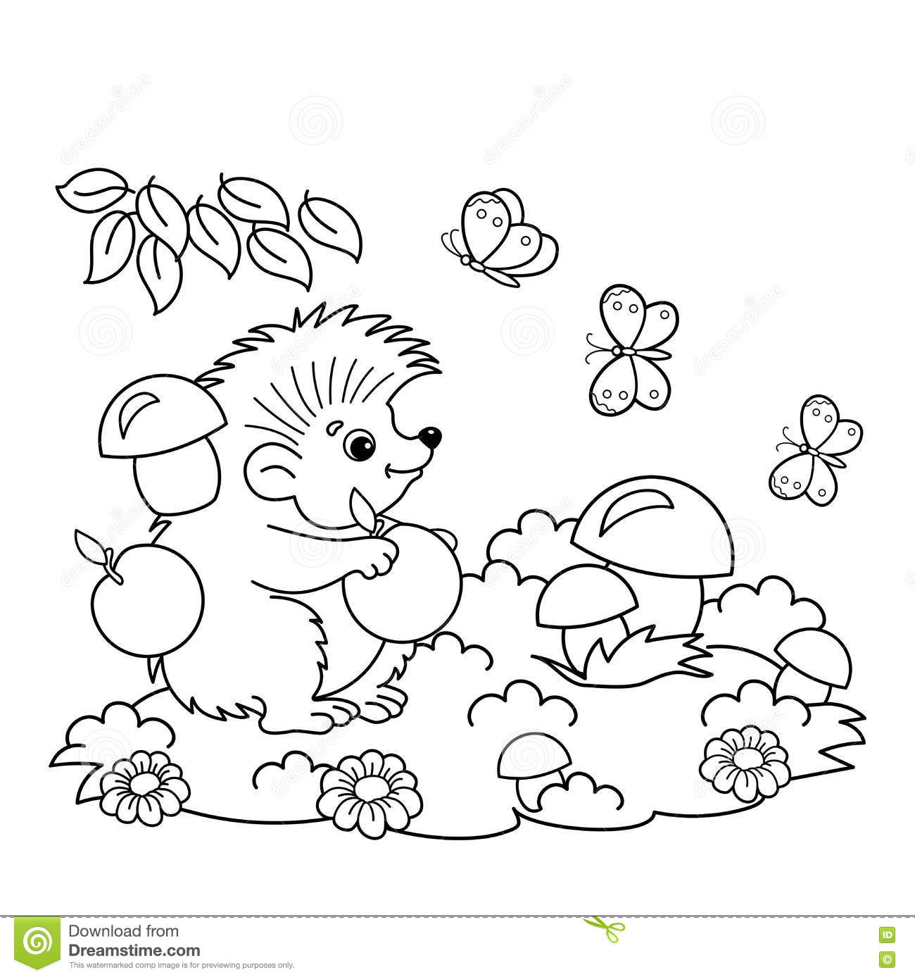 coloring page outline of cartoon hedgehog with apples and