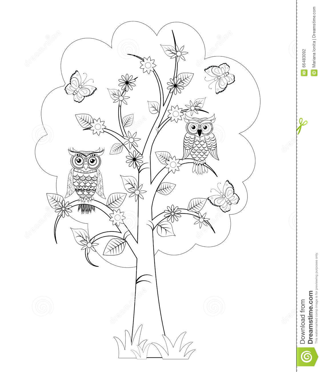 Coloring Page With Owls Stock Illustration Illustration Of Tree