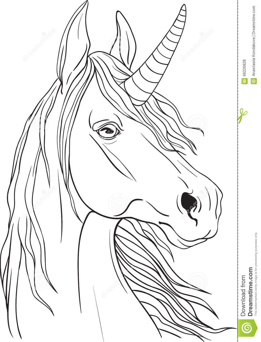 Coloring book with aportrait of a unicorn with a flowing mane