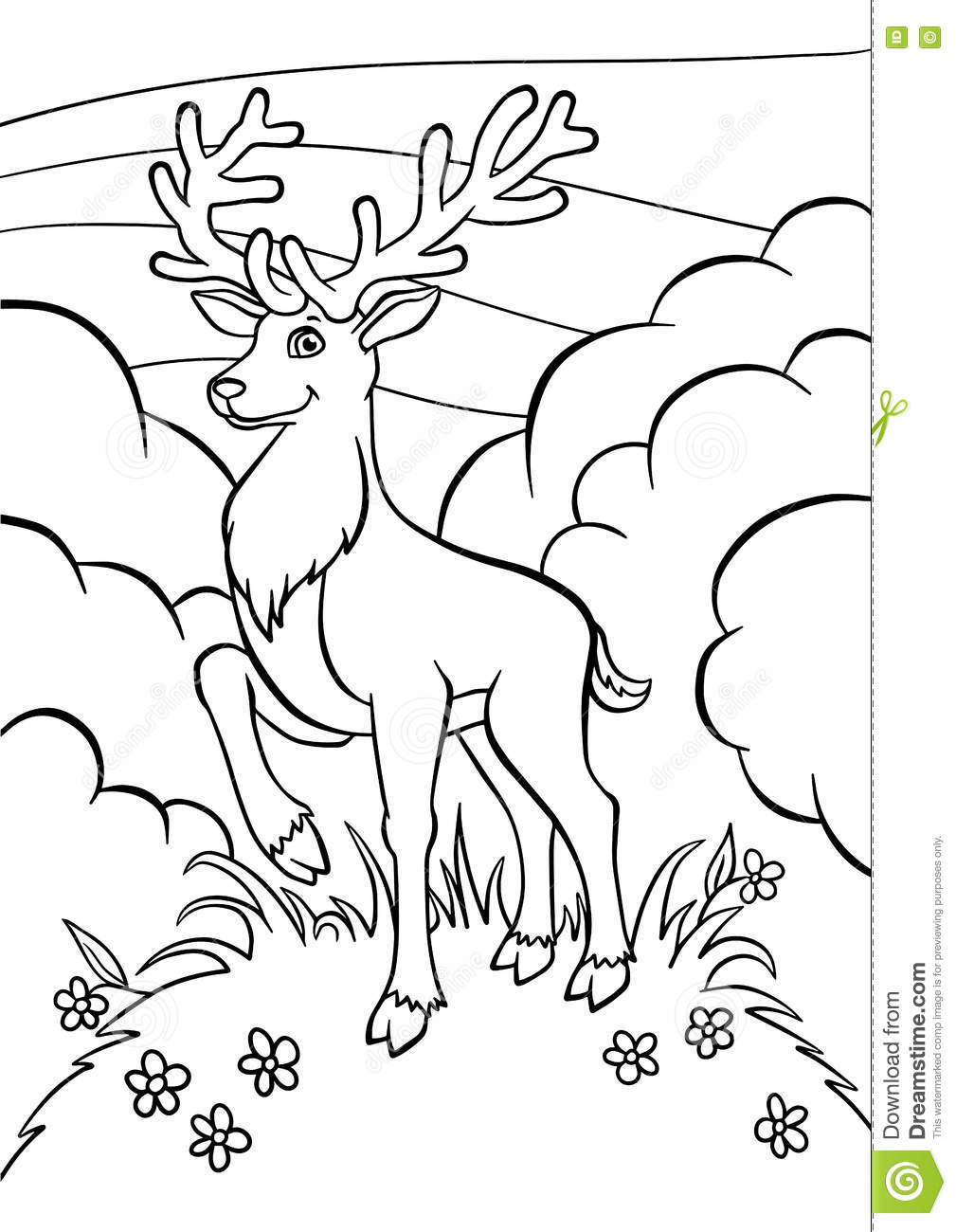 coloring pages animals little cute deer stock vector image