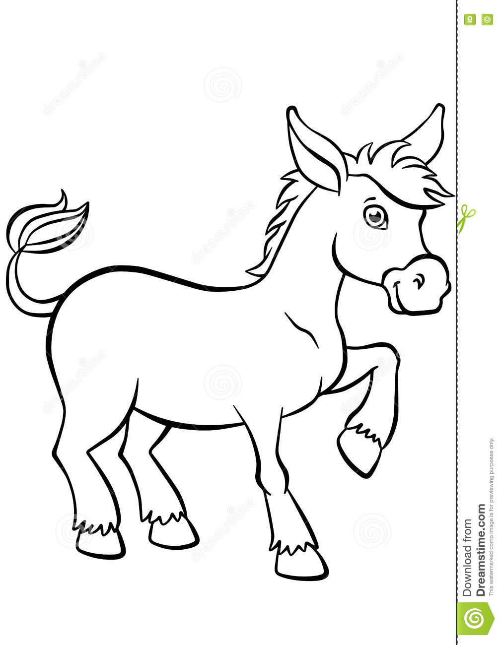 Coloring pages. Animals. Little cute donkey.