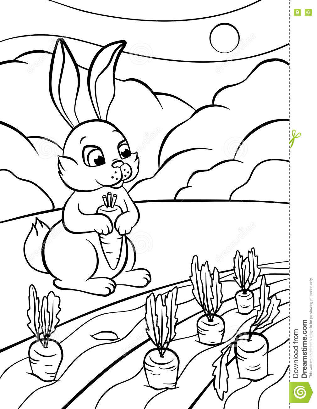Download Coloring Pages Animals Little Cute Rabbit Stock Vector